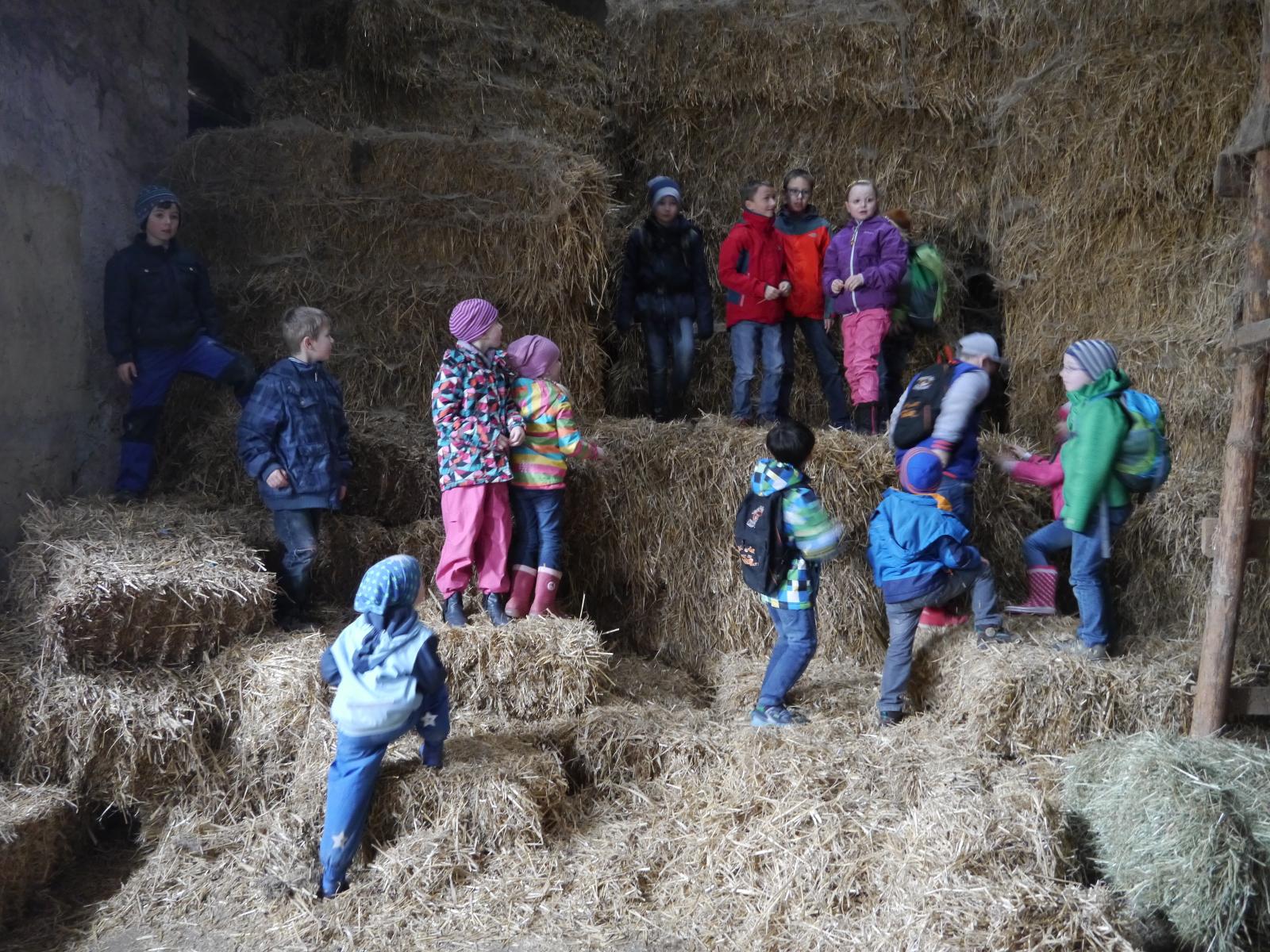 Frühjahrswanderung von Bauernhof zu Bauernhof
